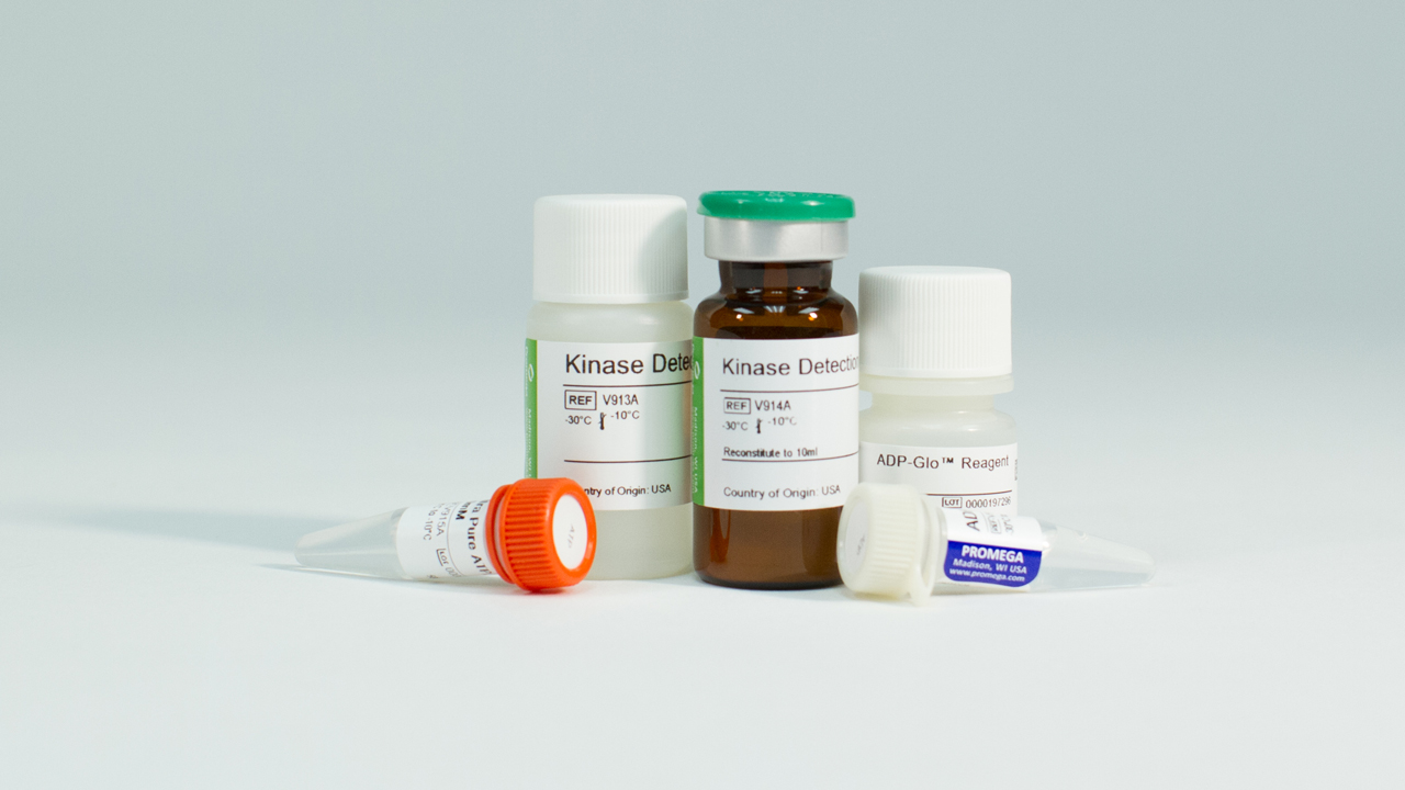 Kinase Assays