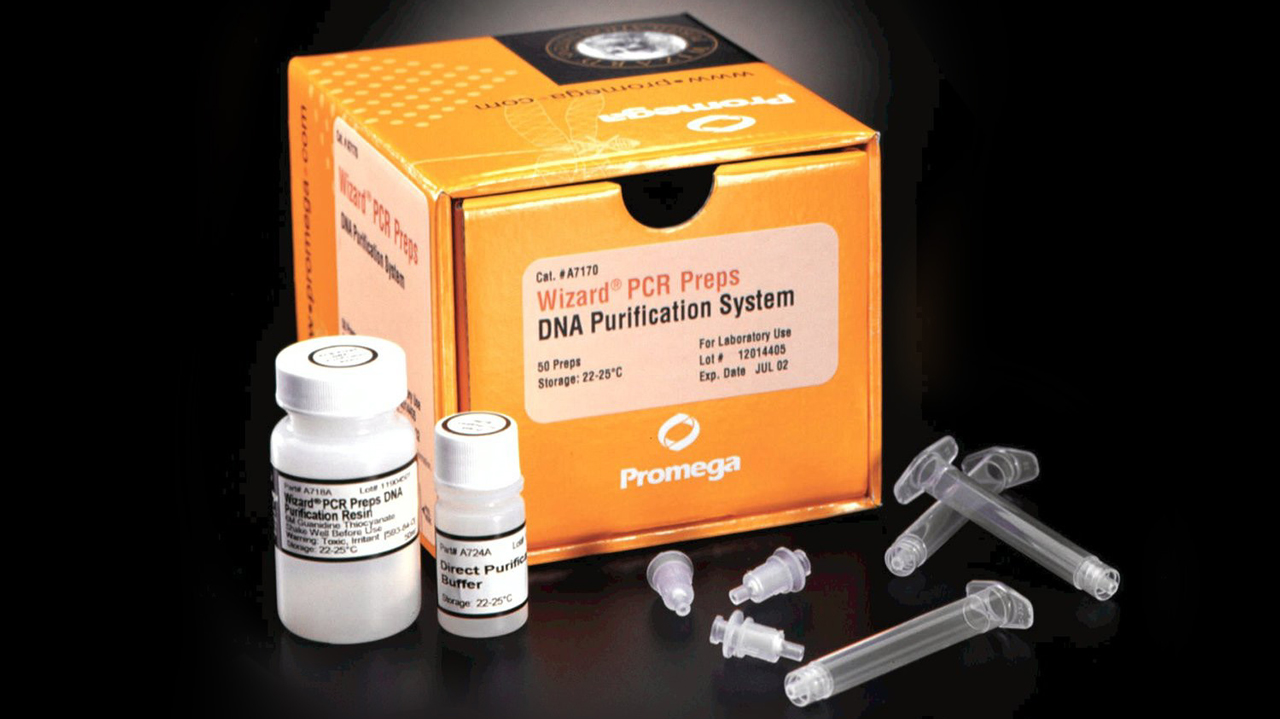 DNA and RNA Purification