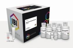 Plasmid Purification-Kits High-Speed / Fast Ion