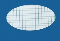 Membrane filters, gridded Type 13806
