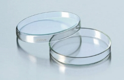 Petri dishes,  Soda-lime glass