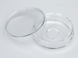 Glass-bottomed trays, Nunc ™, borosilicate