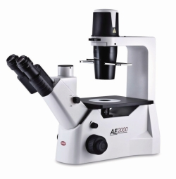 Inverted Routine microscope for live cell inspection, AE2000