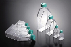 Cell culture flasks, treated, PS, sterile
