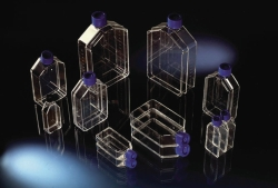 Cell Culture Flasks, Nunclon™Δ Surface, PS/PE-HD, sterile