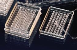 MicroWell plates MiniTrays Nunclon™ Δ, PS