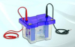 Gel electrophoresis tank omniPAGE Mini